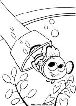 finding nemo coloring pages on coloring bookinfo