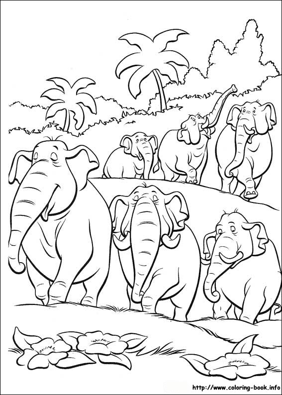 Book coloring picture