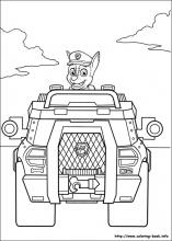 50 Paw Patrol Pictures To Print And Color Last Updated December 5th