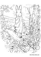 10 Top Pete Dragon Printable Coloring Pages   Yumiko Fujiwara   220x157