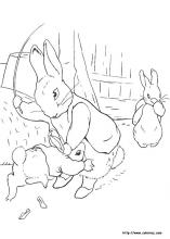 peter rabbit coloring pages 30 peter rabbit pictures to print and color last updated january 30th - Peter Rabbit Coloring Pages