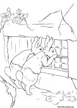 30 peter rabbit pictures to print and color last updated october 13th