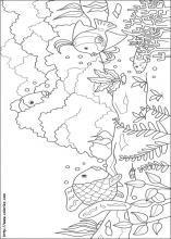 index coloring pages - Rainbow Fish Coloring Page