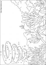 rainbow fish coloring pages 13 rainbow fish pictures to print and color last updated october 27th - Rainbow Fish Coloring Page