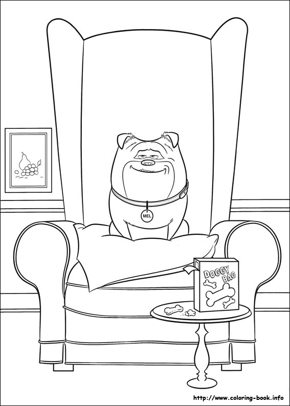 the secret life of pets coloring picture