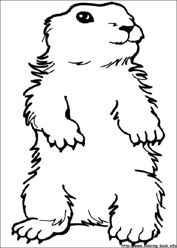 Groundhog Day coloring picture