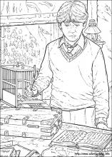 Harry Potter Coloring Pages On Coloring Book Info