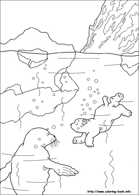 - Little Polar Bear Coloring Picture