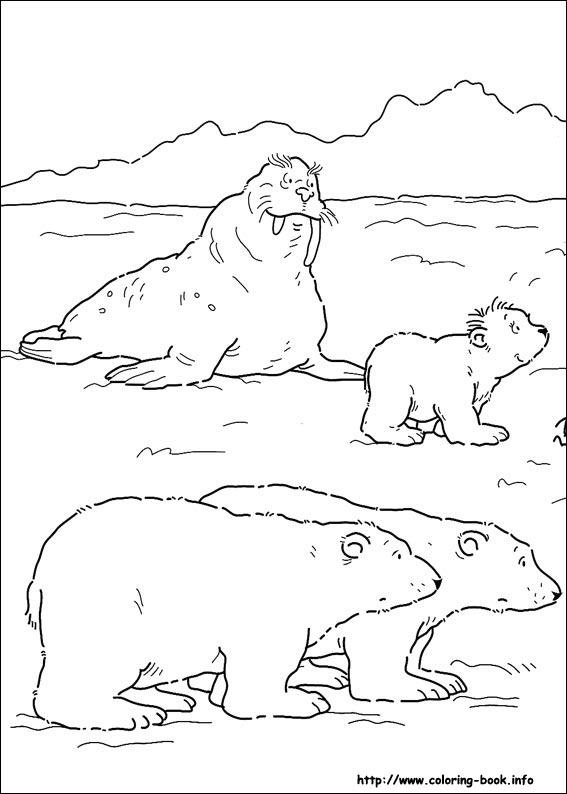 Little Polar Bear Coloring Picture
